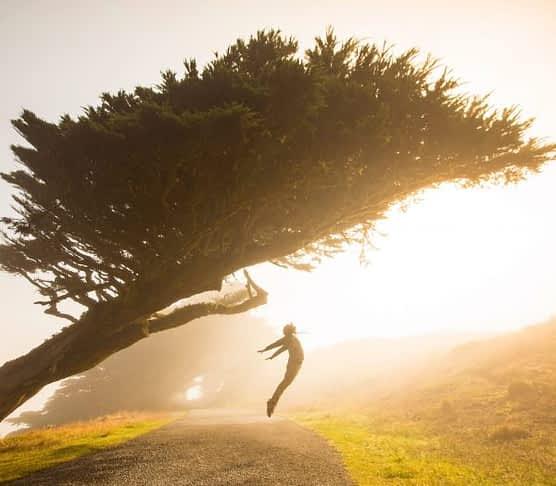 jump in the sun